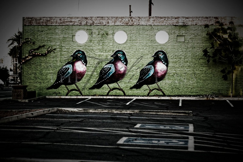 Three Robins - Art for Art's Sake