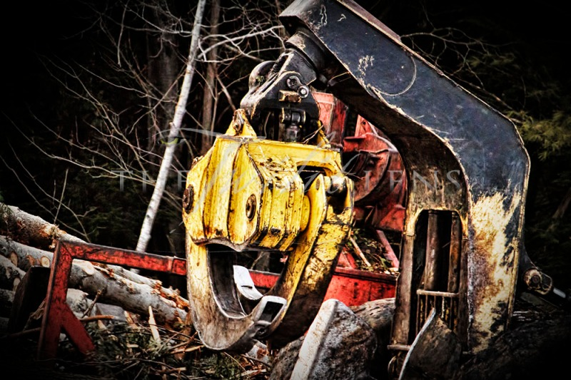 Abandoned Loader - A Photography Drive-By