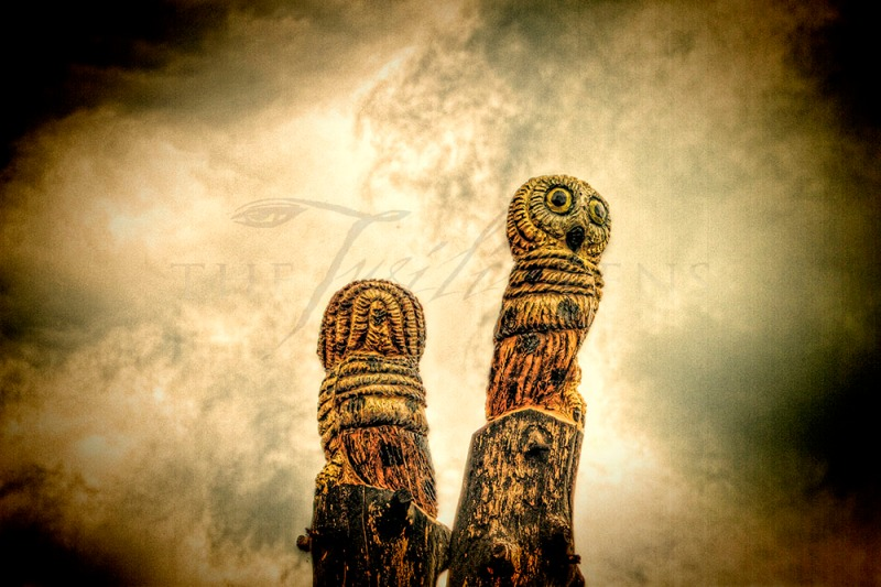 Carved Owls - Woodpile Americana